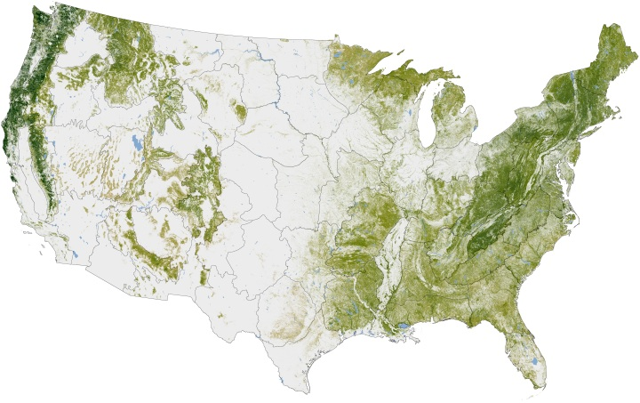 Where the Trees Are: NASA Earth Observatory
